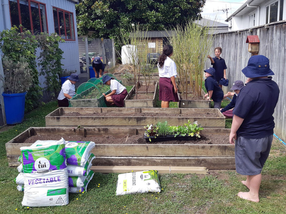 St Marys School students get to work on their vegetable garden